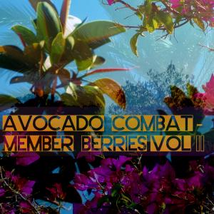 Member Berries Vol 2 Cover